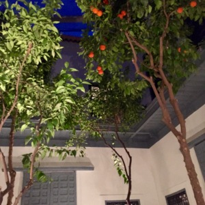 Orange-tree_darhanane_marrakesh - Copy