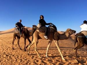Sahara_lins+jay