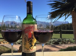 chamonix-wine