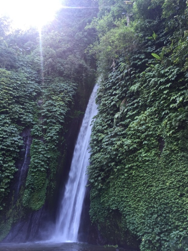 coralwaterfall
