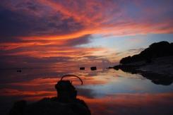 pinkcoco-horizon-sunset