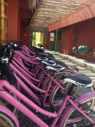 pinkcocobikeracks