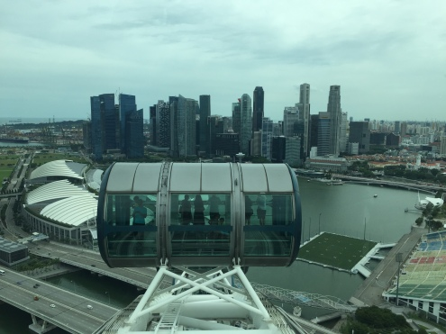 singapore-flyer-downtown