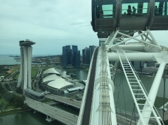 singapore-flyer-view